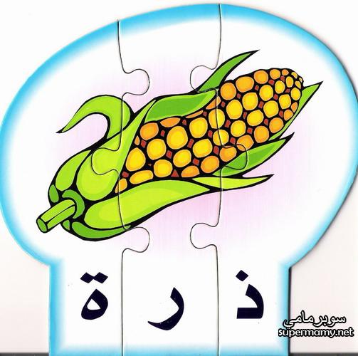 نصائح عن الغذاء الصحي للأطفال كيفية اختيار الطعام الصحي للطفل بالعربي نتعلم In 2021 Vintage Nature Photography Nature Photography Cards